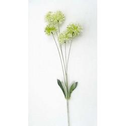 Pompon Verte/blanche 5...