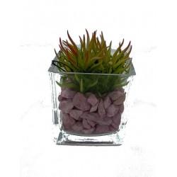 Mini Vase Plante Grasse 1