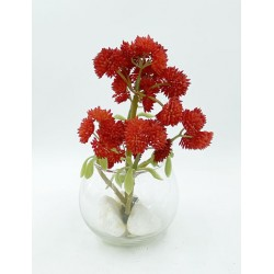 Mini Vase Plante Grasse 3