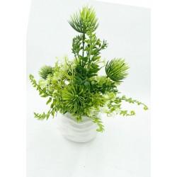 Mini Vase Plante Verte 5