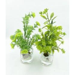 Mini Vase Plante verte 12