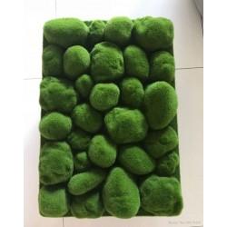 Mousse de Faux Pièrre verte